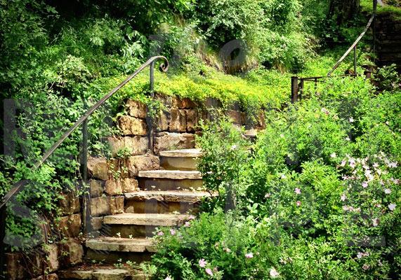 Stairway to Aspen
