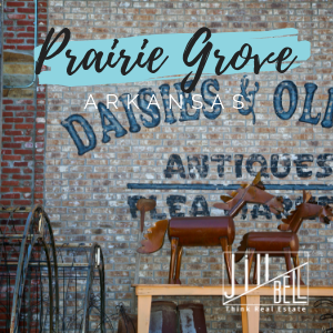 Prairie Grove Arkansas Homes for Sale